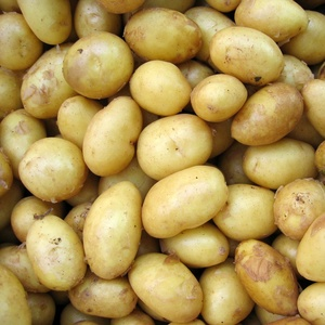 Pommes de terre, oignons et échalottes